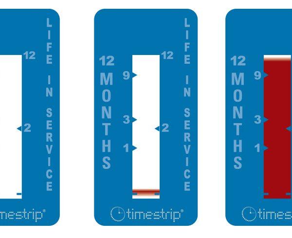 Timestrip_Time_12_months_progression